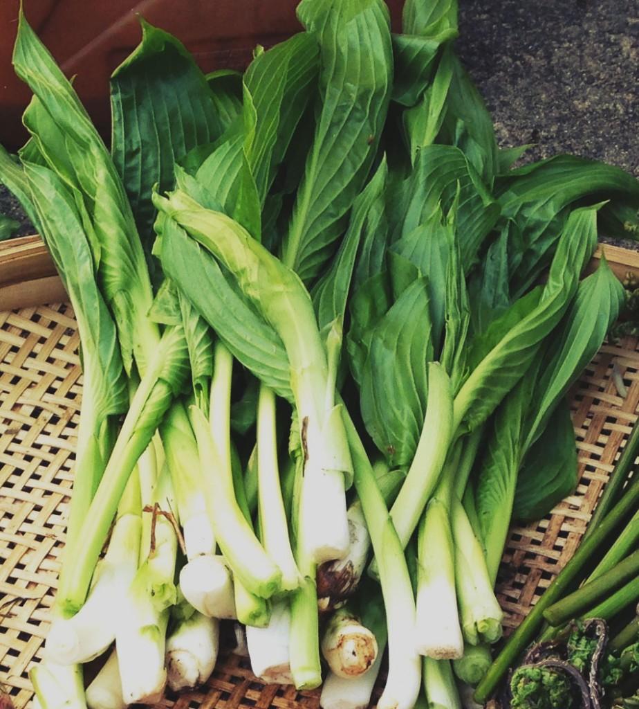 方 うるい 食べ 【春の野菜】うるいの旬はいつ?おいしい食べ方は?